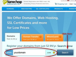 Check Domain Availability